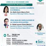 SESIÓN ONLINE CAPÍTULO DE GLAUCOMA – NOVIEMBRE2020