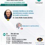 SESIÓN ONLINE CAPÍTULO DE RETINA Y VITREO – NOVIEMBRE2020